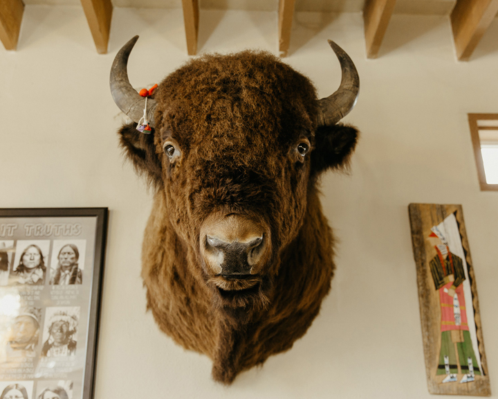 A bison head mounted on a wall between framed Native American art.
